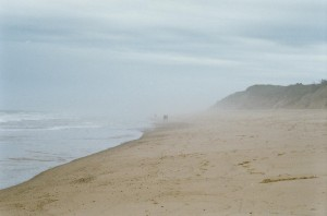 Beach-Picture.jpg